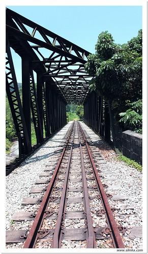 Bukit Timah Walk 04