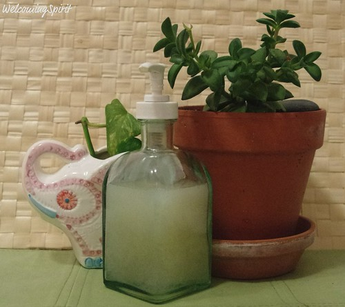 homemade liquid soap