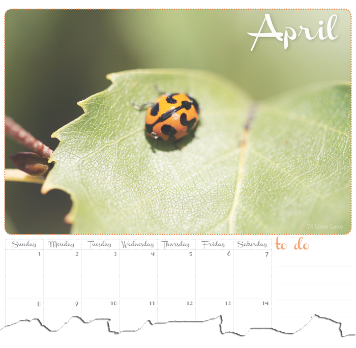 74 Lime Lane ~ April Calendar