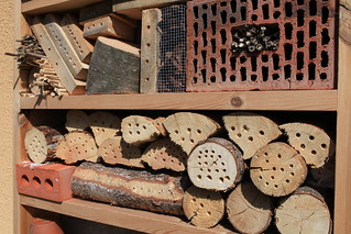 My recent insect hotel