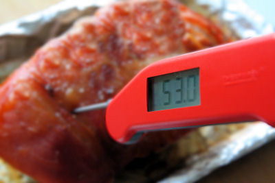 Taking temperature of pork 3856 R