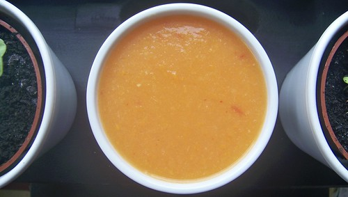 Spicy Spring Carrot Soup