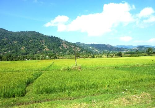 V 12-Route Nha Trang-BMT (60)