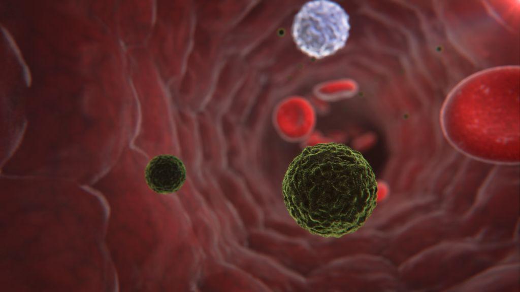 Ebola: Veneto, negativi i tre casi