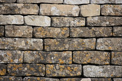 Dry Stone Wall, Regular
