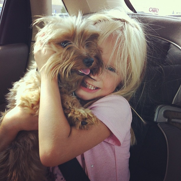 A girl and her puppy. #kids #dog #dorkie
