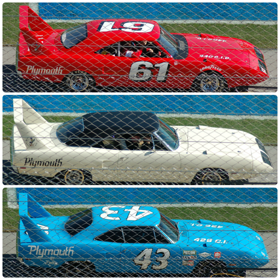Talladega_900_round_corners_red_white_blue_PicMonkey Collage