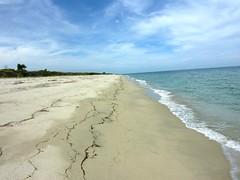 Marche le long de Foce de Fierascuti : la plage vers le N