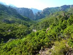 Le ruisseau de Figa Bona (Mela IGN) et la brèche du Carciara au loin