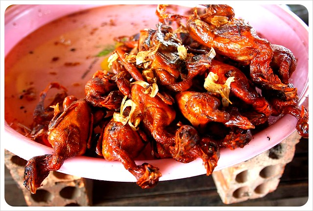 cambodia fried birds