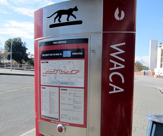 Perth Red CAT bus stop