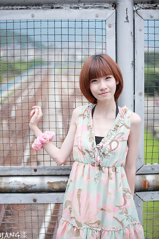 竹竿◆夏の日