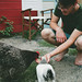 Chickens + Cali by Sarah Jane- Lovely Ember Photography