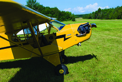 aviation, airplane, yellow, wing, vehicle, piper j-3 cub, ultralight aviation,