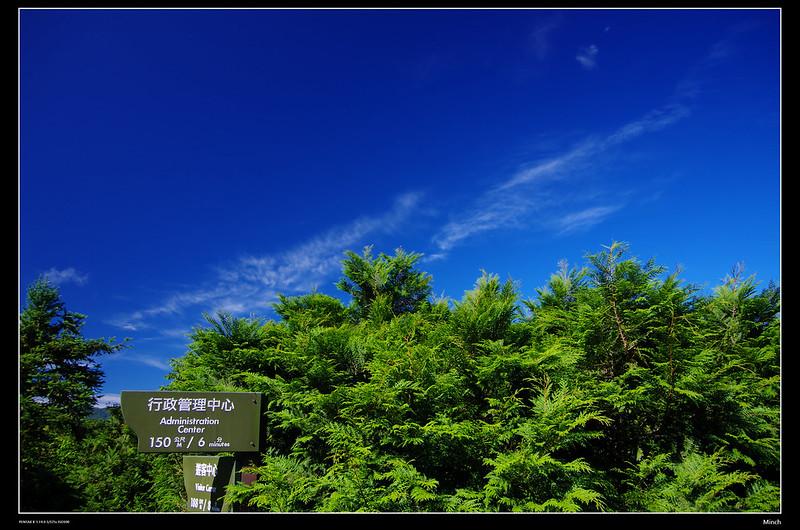 東眼山之不問是非‧只有藍綠