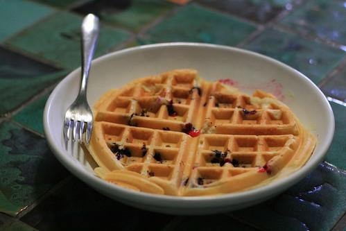 Plain blueberry waffle