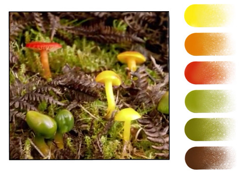 Enamel color palette - Mushrooms