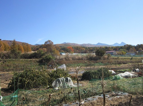 畑と里山の紅葉 2012年11月4日10:36 by Poran111