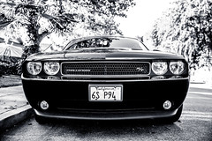 wheel(0.0), stock car racing(0.0), automobile(1.0), automotive exterior(1.0), dodge(1.0), vehicle(1.0), automotive design(1.0), grille(1.0), dodge challenger(1.0), bumper(1.0), classic car(1.0), land vehicle(1.0), luxury vehicle(1.0), muscle car(1.0),