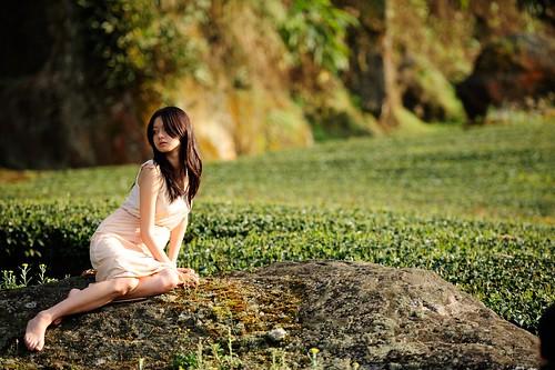 無料写真素材, 人物, 女性  アジア, 人物  田園・農場, お茶, 台湾人