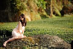 [フリー画像素材] 人物, 女性 - アジア, 人物 - 田園・農場, お茶, 台湾人 ID:201204072200