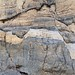 Small Normal Faults in Titus Canyon by Ron Wolf