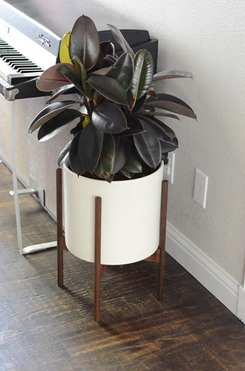 modernist giveaway planter with est modernica justina jungalowjungalow blakeney