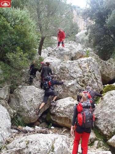 Camí del Torrent dels Llorers (12)