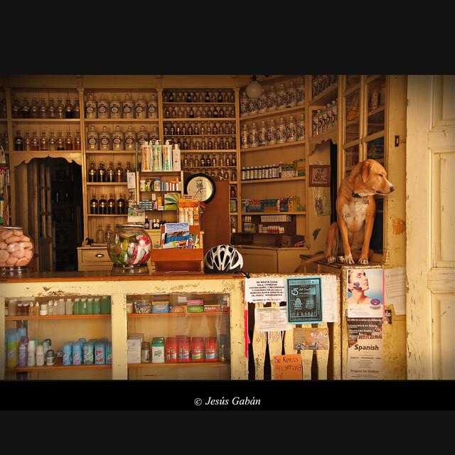 El guardián de la farmacia (San Miguel de Allende)