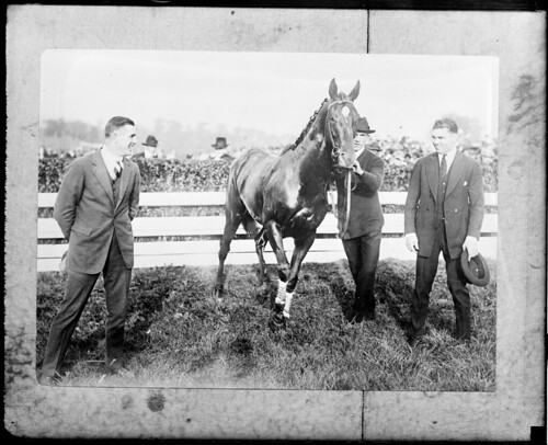 Man O'War at Rose Tree hunt clubs meet in Media, PA. L-R: Jack Kelly, world's single and double rowing champ, Man O'War, Jack Dempsey.