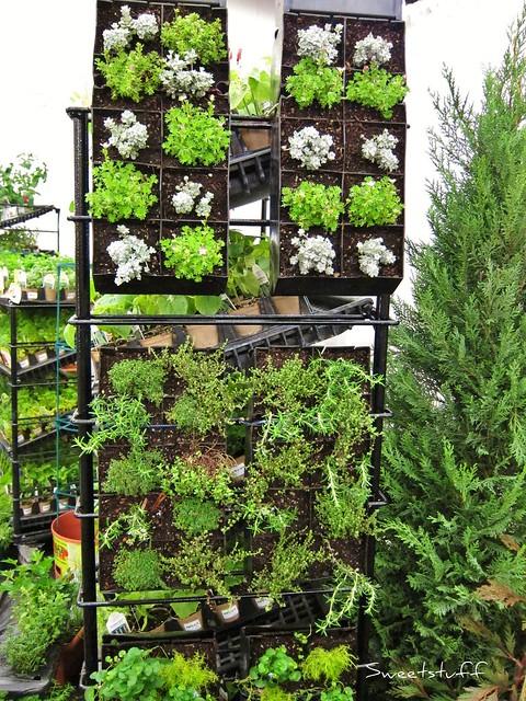 Vertical Herb Gardening