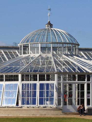 Camellia conservatory