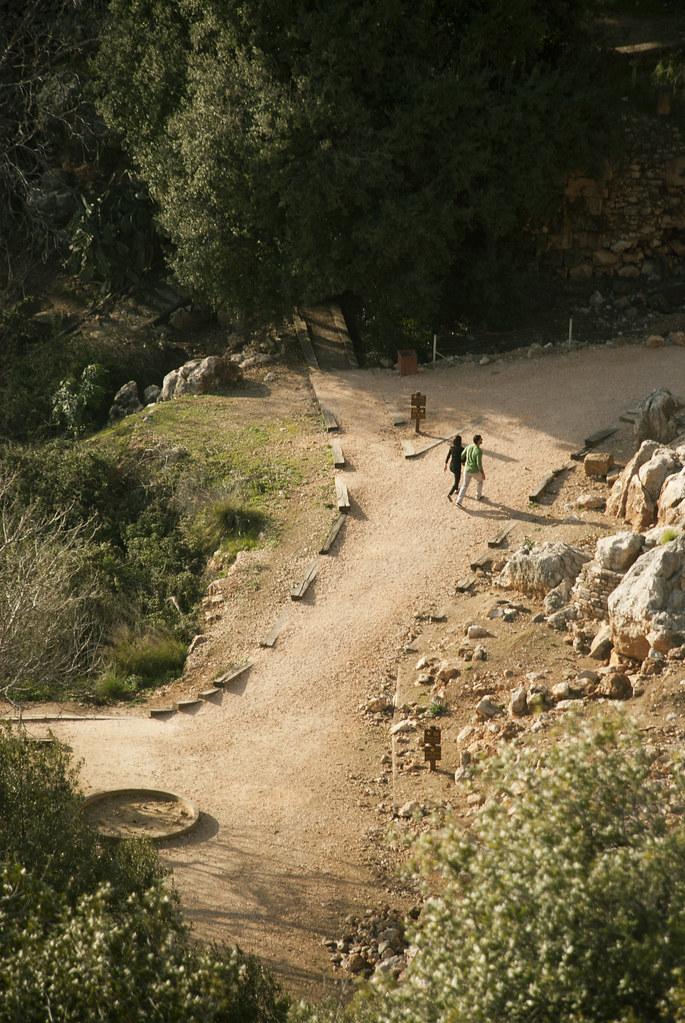 Paths #3.