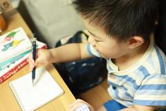 熱があるのに1.3mmのシャーペンでコクヨのリングノートにお絵描きするとらちゃん (2012/7/8)