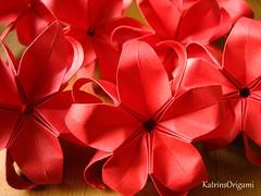 Monbloss Flower