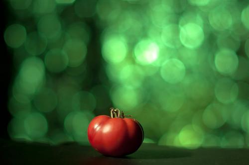 Day 196 - Tiny Tomato