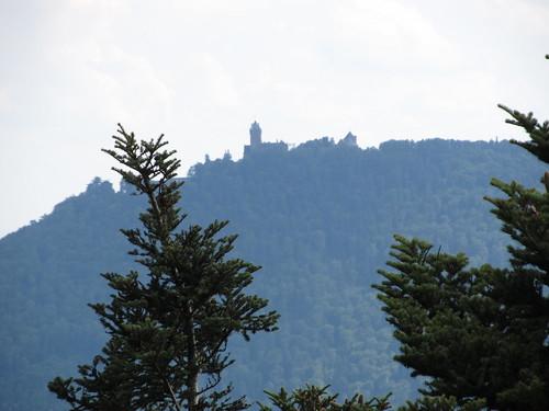 ruine du chateaux frankenbourg 151