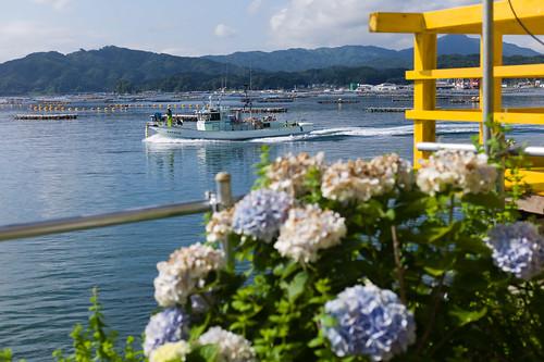 landscape raw rangefinder tsunami iwate 岩手県 tohoku reportage yamada 津波 adobelightroom 山田町 mhexanon50mmf2 japanearthquake leicam9 東日本大震災 thesecondsummerfromtsunami