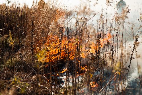 Burning biocore prairie - 20121108 - 43