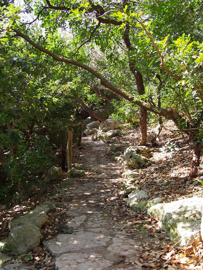 zilker japanese garden | isamu taniguchi oriental garden
