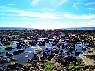 Rock pools by the North Sea, Whitley Bay