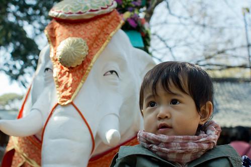 Todoroki 8 Apr 2012