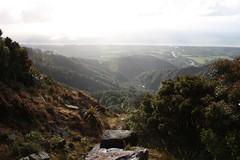 由丹尼斯頓高原頂端向塔斯曼海遠眺。(Charl & Hetta Marais 攝影)