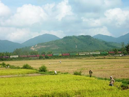 V-Route Quy Nhon-Da Nang (12)