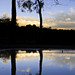 Reflections by Tim Swinson   http://timswinson.com