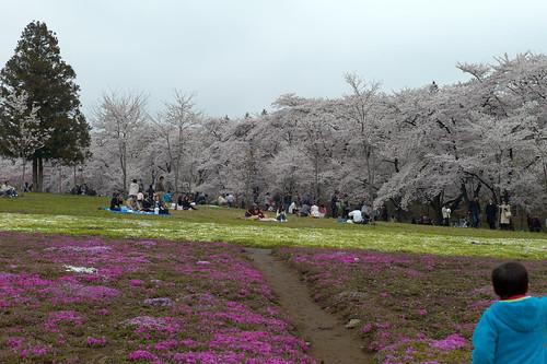 AKG_2012-04-21_012