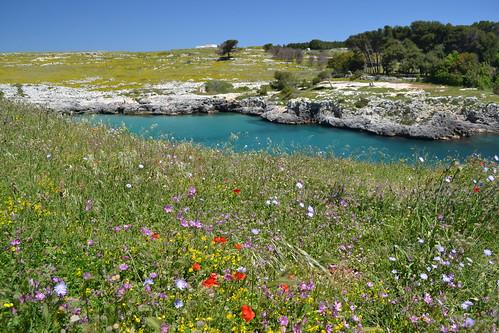 Porto Badisco - sarabrag auf flickr.com