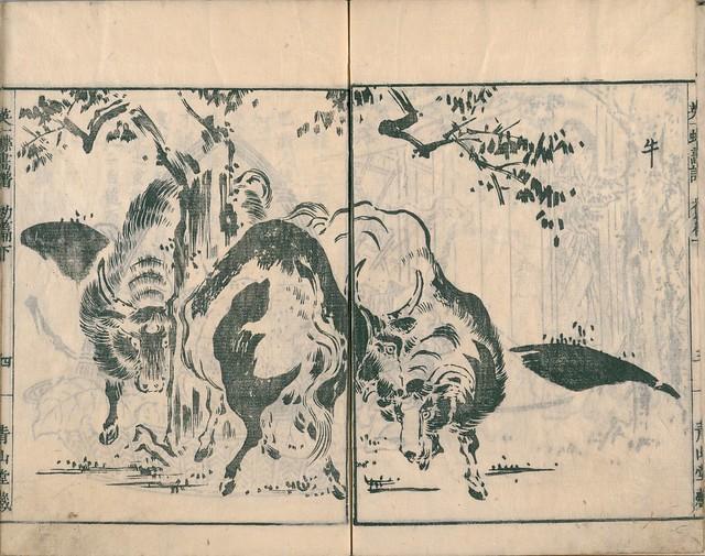 Eiichi Butterfly Book dl.ndl.jp