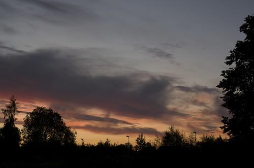 trees sunset sky colour silhouette clouds twilight raw dusk streetlights tartu pentaxk01