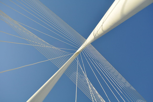 Bridging (35)